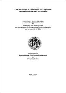 the nuclear age novel pdf