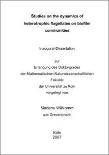 Phd thesis biofilm
